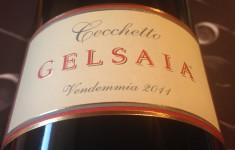 Gelsaia 2011