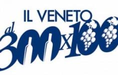 300x100-logo-300x173