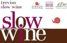 treviso-slow-wine-300x188
